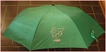 Alpha Kappa Alpha 1908 Umbrella