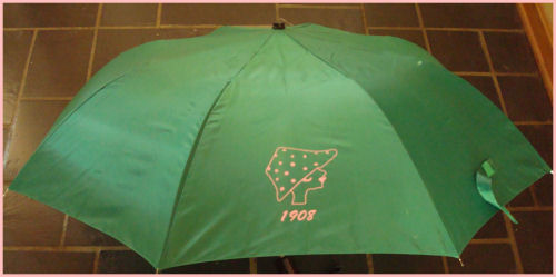 Alpha Kappa Alpha Umbrella