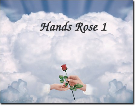 White Hands with Rose Print
